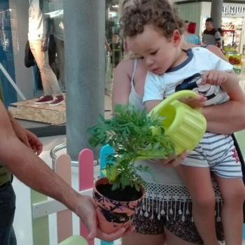 taller-de-jardineria-domingo-4-de-septiembre-7
